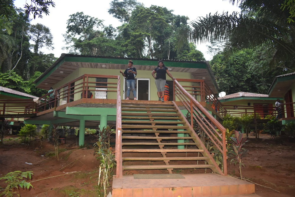 Tree House Adventure / Benin Kingdom